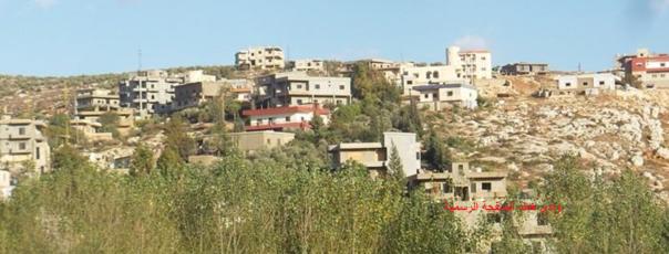 المجدل - وادي خالد